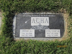Jose A Acha