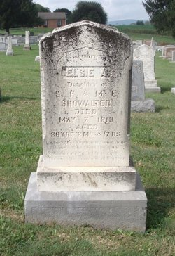 Elsie Ann Showalter