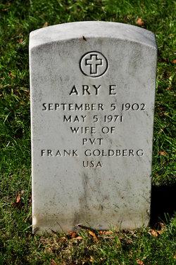 Ary E Goldberg