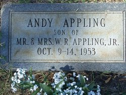 Andy Appling