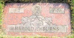 Harold James Burns