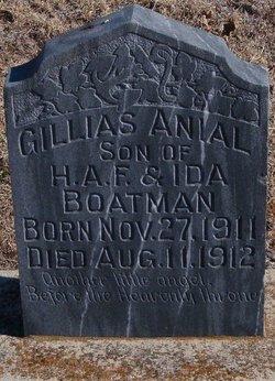 Gillias Anial Boatman