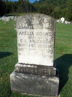 Amelia <i>Adams</i> Anderson