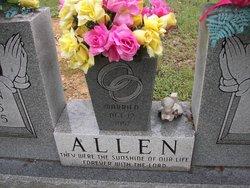 Vasco Warren Allen