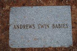 Twin Babies Andrews