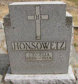 Cecelia <i>Johnson</i> Honsowetz