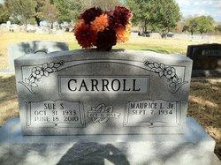 Sue <i>Sedlacek</i> Carroll