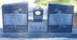 Elizabeth J. Veal