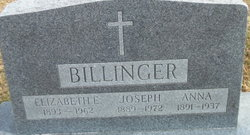 Anna Maria <i>Hammerschmidt</i> Billinger