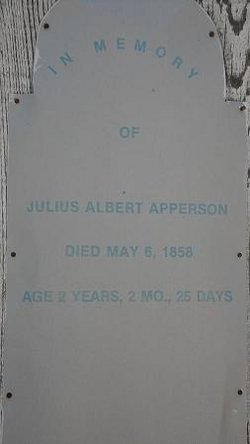 Julius Albert Apperson