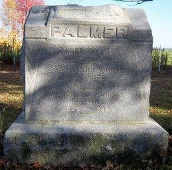 Caleb Palmer