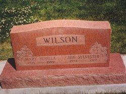Joy Sylvester Wilson