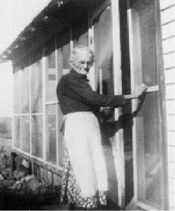 Rosa Elmer <i>Williams</i> Lawson