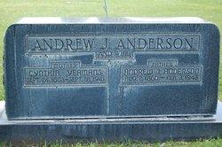 Andrew John Anderson