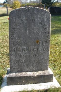 Charles B Alley