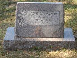 Joseph B Lipsmeyer