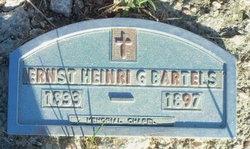 Ernst Heinrich Gottlieb Henry Bartels