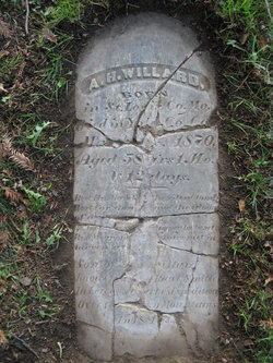 Alexander Hamilton Ham Willard, II