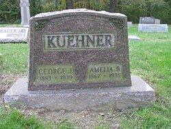 Amelia <i>Baltz</i> Kuehner