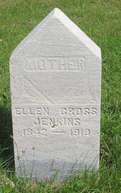 Eleanor Ann Ellen <i>Cross</i> Jenkins