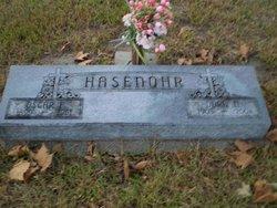 Dora A. <i>Boese</i> Hasenohr