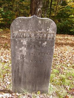 David F Cross