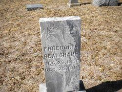 Freedonia <i>Jaggers</i> Beauchamp