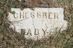Baby Girl Chessher