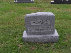 George M Adams