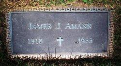 James J. Amann, Sr.