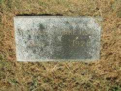 Walter Clarke Root