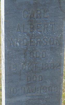 Carl Albert Anderson
