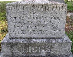 Sarah Sallie <i>Smallwood</i> Biggs