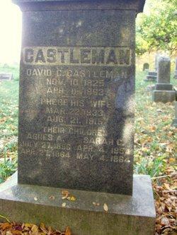 David C. Castleman