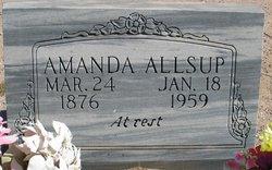 Amanda <i>Van Winkle</i> Allsup
