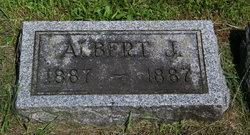 Albert J Olson