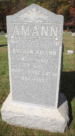 Nelson Amann