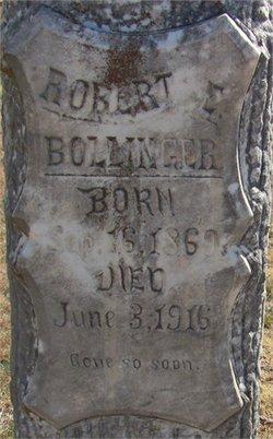 Robert E Bollinger