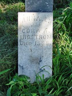 Anna E Engstrom