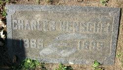Charles Gustave Henschel
