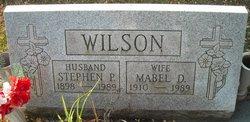 Stephen P Wilson