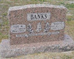 Earl W Banks