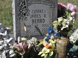 James R Snake Beard