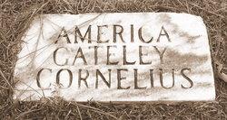 America <i>Gately</i> Cornelius