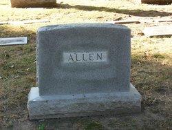 Ann P Allen