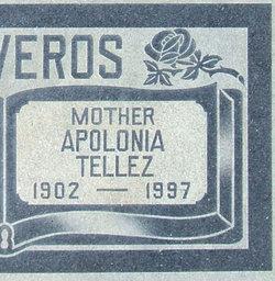 Apolonia <i>Tellez</i> Ontiveros