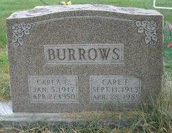 Carl F. Burrows