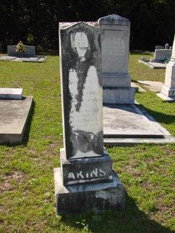 William Robert Akins