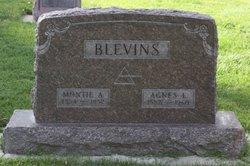 Montie A Blevins