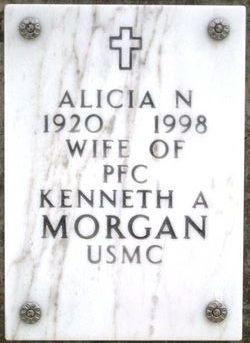 Alicia N Morgan